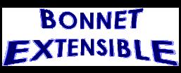 """Illustration article """"bonnet"""" (perruque, lace wigs)"""